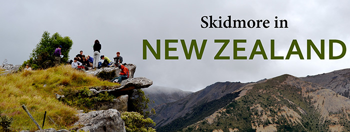 Skid NZ header